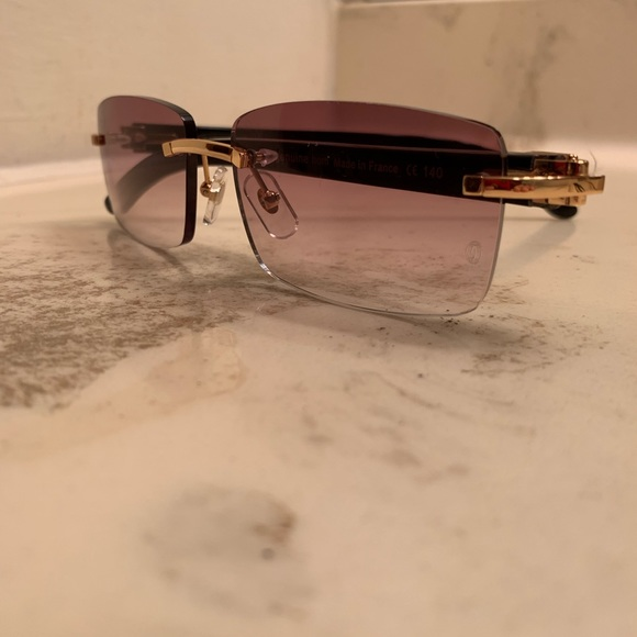 22d9248ed22b Cartier Buffalo Genuine Horn sunglasses